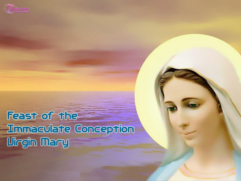 Virgin Mary Pictures And Wallpapers Feast Of The Immaculate Conception Ueq4a6 Clipart